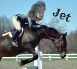 leaping jet